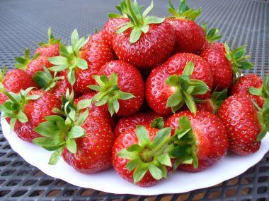 Dort z kysané smetany s letním ovocem