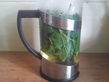 Kopřivový čistící čaj