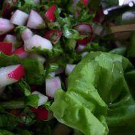 Rychlý ředkvičkový salát 1 recept