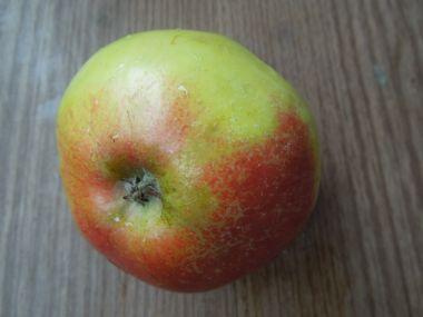 Medová marináda s jablkem