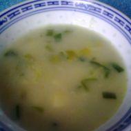 Lehká pórková polévka recept