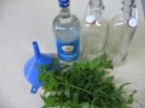 Mátový likér  žaludeční recept