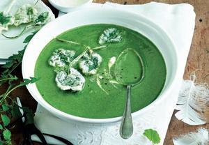 Bylinková polévka s fialkovými listy v těstíčku
