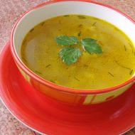 Zeleninová polévka s ovesnými vločkami recept