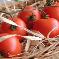 Rajčatový džem recept