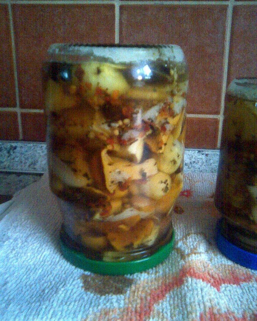 Matjesy z tvrdých hub  pikantní recept