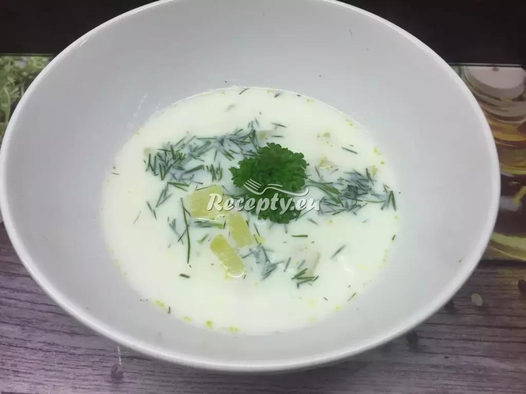 Polévka z acidofilního mléka recept  polévky
