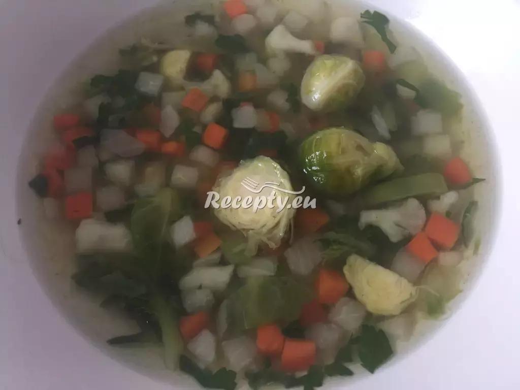 Polévka z růžičkové kapusty recept  polévky