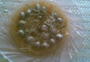 Játrové knedlíčky (do polévky)