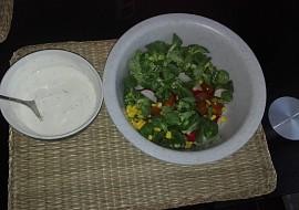 Salát se zakysanou smetanou recept