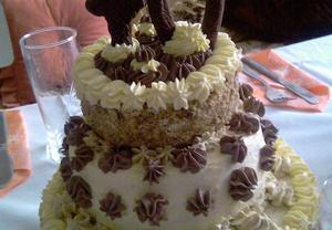 Majolkovo-ořechový dort (korpus)