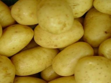 Karbanátky z mletého masa z brambor