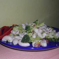 Těstoviny s brokolicí 1 recept