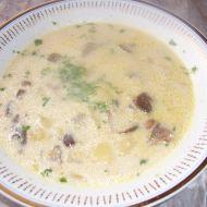 Hříbková polévka recept