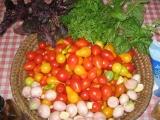 Rajčatové Pesto recept