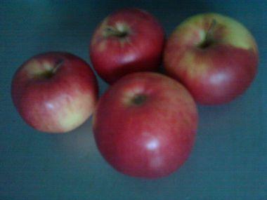Křen s jablkem