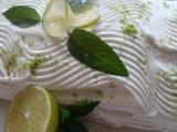 Letní řezy Mojito recept