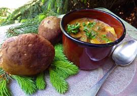 Gulášová polévka s lesními houbami recept