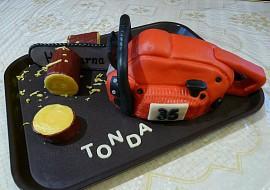 Motorová pila pro Tondu recept