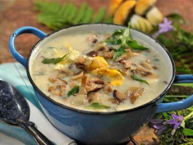 Smetanová polévka s houbami