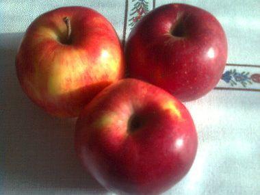 Jablečný likér