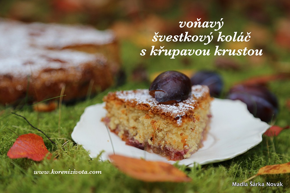 Voňavý švestkový koláč s křupavou krustou recept