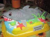 Jak se dělá žralok- sladký dort recept