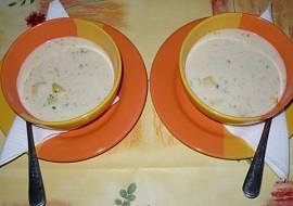 Česnekovo  smetanová (krémová) polévka recept