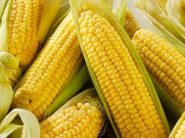 Polévka z mražené kukuřice