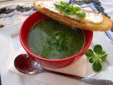 Polévka s polníčkem recept