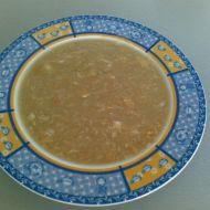 Zdravá cibulová polévka recept