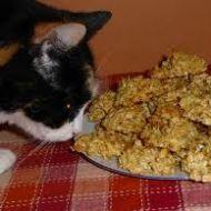 Rychlé ovesné sušenky recept