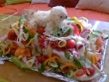 Slaný dort s boloňským psíkem recept