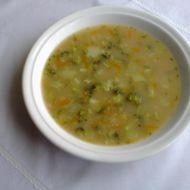 Brokolicová polévka s vločkami recept