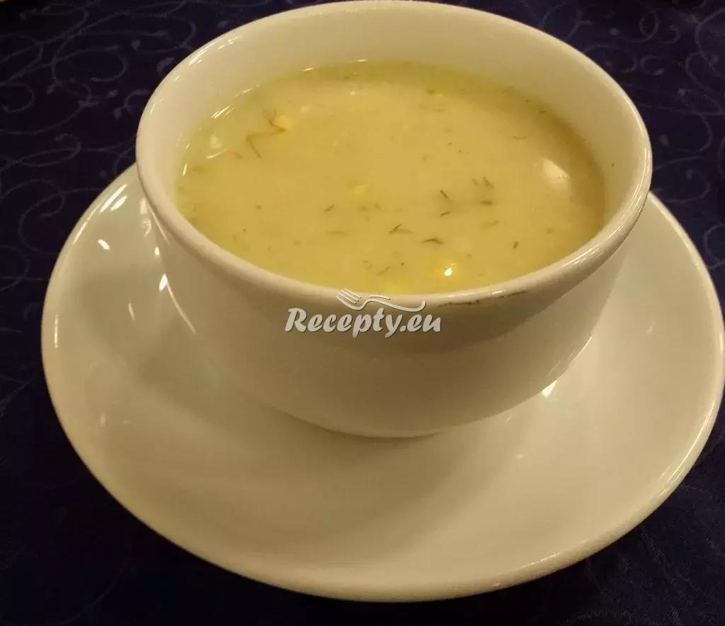 Koprová polévka podle babičky recept  polévky