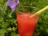 Melounový sorbet recept