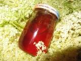 Med ( sirup ) z květů černého bezu recept