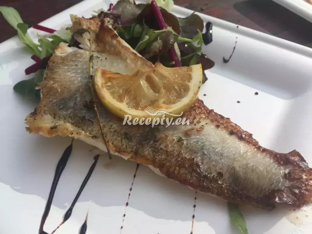 Opečený candát na kmíně recept  ryby