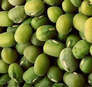 Mungo fazole: Jsou kouzelné, zároveň zdravé a v klidu je naklíčíte sami doma ...