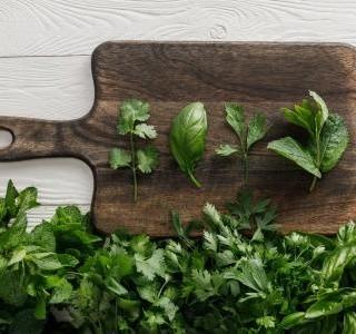 Nevzdávejte se v zimě čerstvých bylinek, odmění vás zdravím