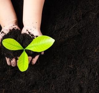 Přeměňte odpad v drahocenný poklad: Pořiďte si domácí kompostér...