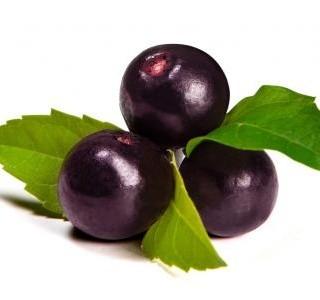 Proč konzumovat Acai berry?