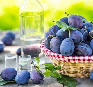 Slivovice – pochoutka z vypáleného ovoce svědčí zdraví!