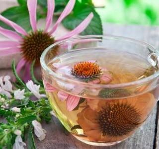 Tyto bylinky s jarní únavou zatočí!