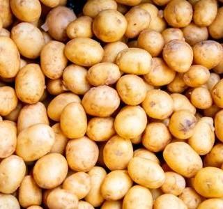 Umíme si v obchodě správně vybrat brambory?