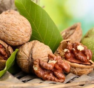 Vlašské ořechy - dar, který si zaslouží řádné uskladnění