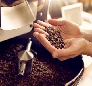 Znáte rozdíl mezi nejznámějšími druhy kávy Arabicou a Robustou?