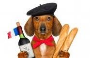 Dobré jídlo, přátelé, a hlavně žádný spěch. Tak stolují Francouzi.