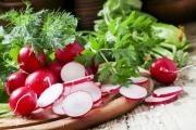 Ředkvička - první jarní zelenina