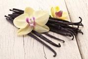 Výroba domácího vanilkového cukru je snadná a ušetří finance